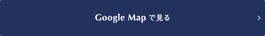Google Map