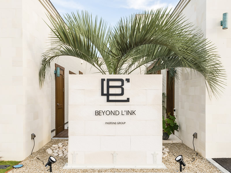 BEYOND LIN`K